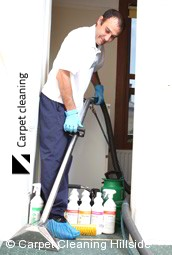 Steam Carpet Cleaning Company Hillside 3037