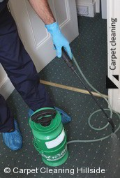 Hillside Professional Carpet Steam Cleaners 3037